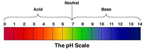 جدول مقیاس ph با کاغذ ph