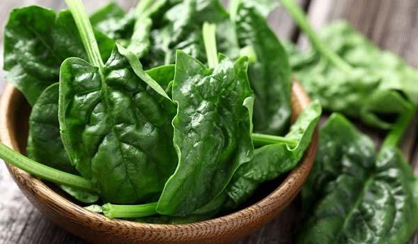 اسفناج یک سبزی مفید برای درمان فقر آهن